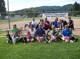 CODAC rocked the BC/Yukon Agility Regional Competition